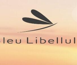 Bleu Libellule Fort de France