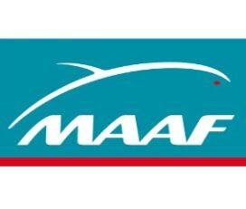 MAAF Assurances Schoelcher (Rue Felix Eboué)