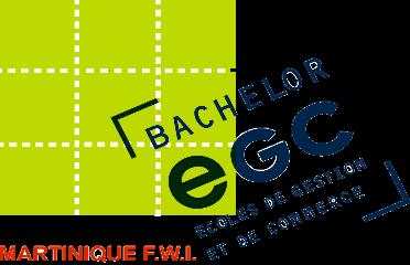 Ecole de Gestion et de Commerce de la Martinique (EGS)